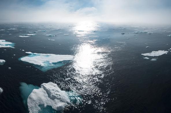 Грант: Видеоконкурс, посвященный вопросам изменения климата