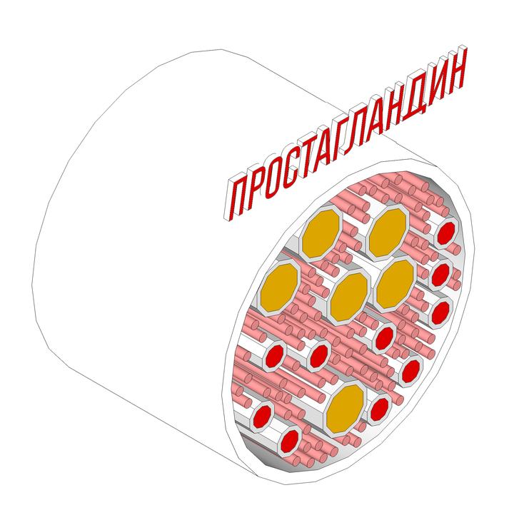 Иллюстрация: Максим Чатский