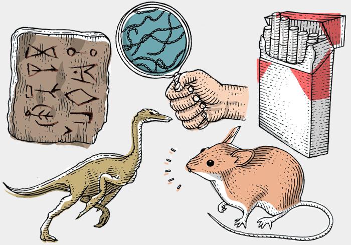 Новые научные открытия: *расшифровка письменности, пернатые динозавры и электрические бактерии*