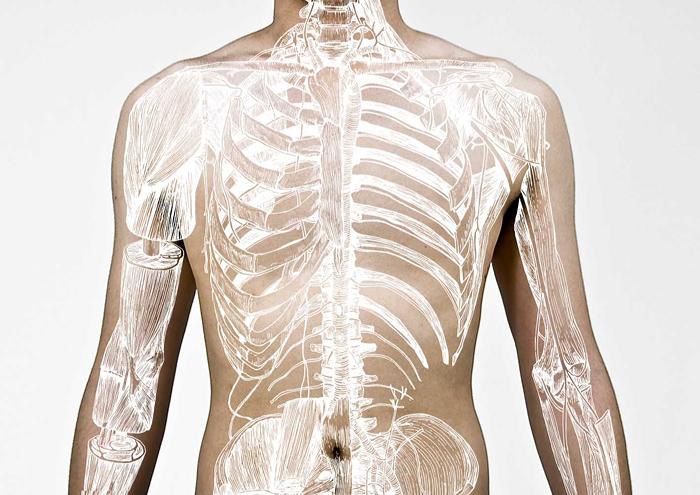 Зачем добру пропадать: как пожертвовать свое тело науке
