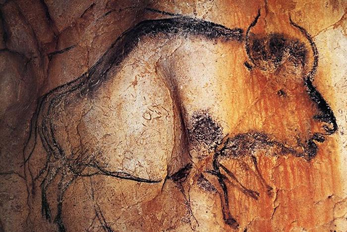 Бизон изпещеры Шове.