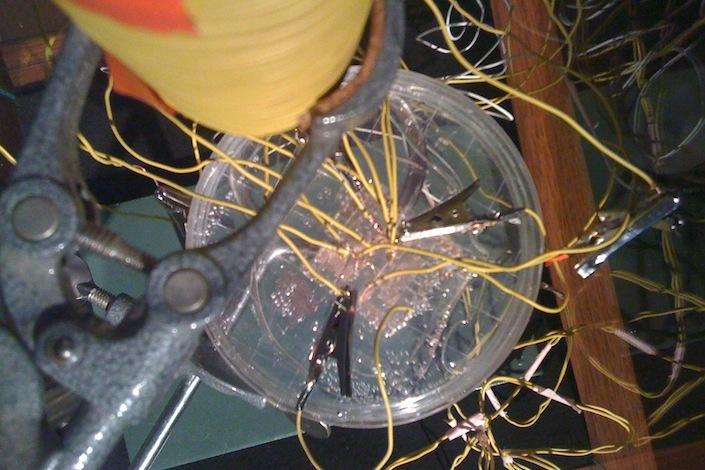 Джо Дэвис (США). «Бактериальное радио», 2011&nb...