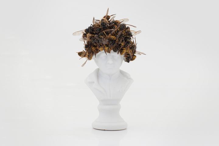 Лучшее на фестивале научного кино: *вымирание пчел, ученые против суеверий и панические атаки*