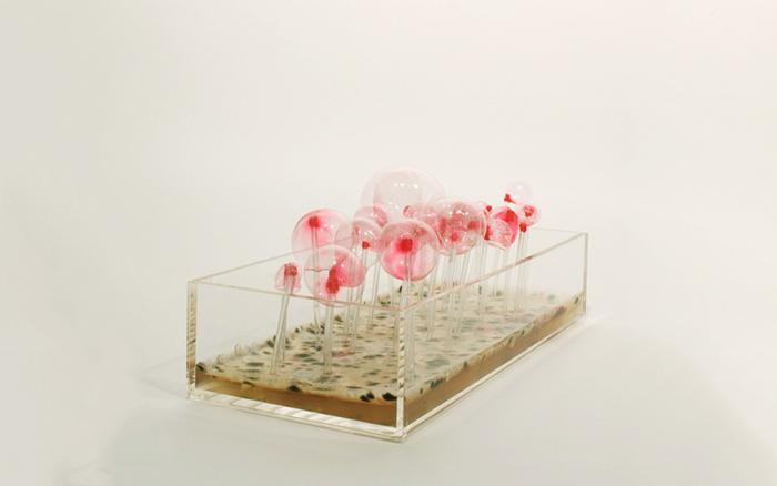 Microbial Breathalyzer @ Biohack:Design