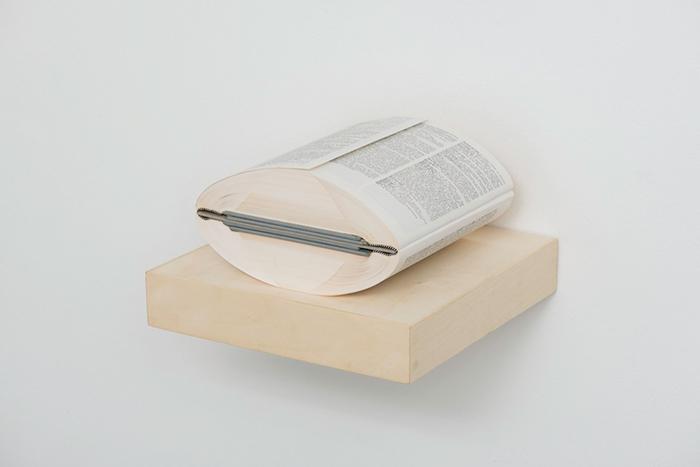 *Эволюция чтения:* что общего у папируса с айпадом