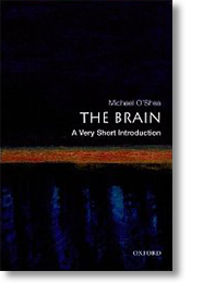 Michael O'Shea «The Brain: A Very Short Introdu...
