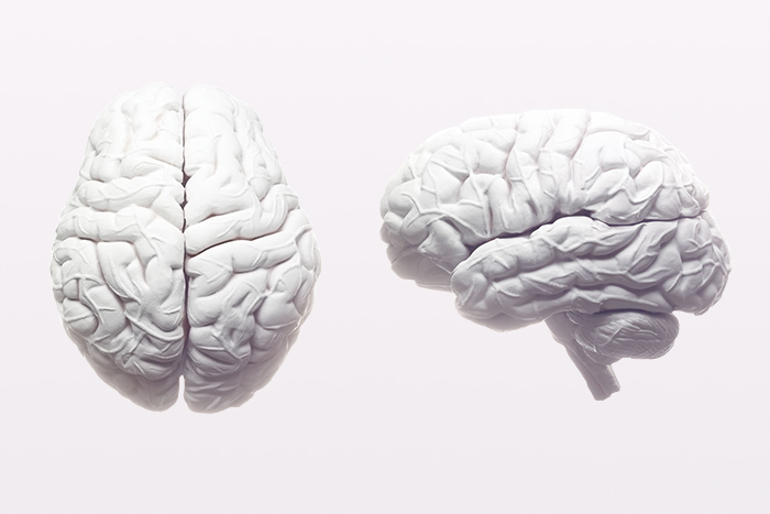 Звуки темноты: *что музыкант-дислексик может рассказать о строении мозга?*