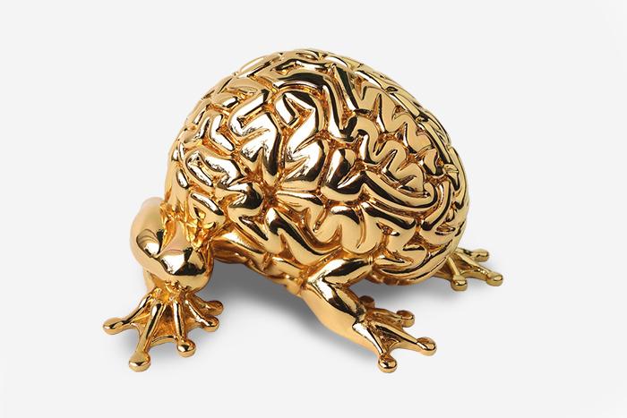 Золотой нейрон: *10 причин восхищаться своим мозгом*