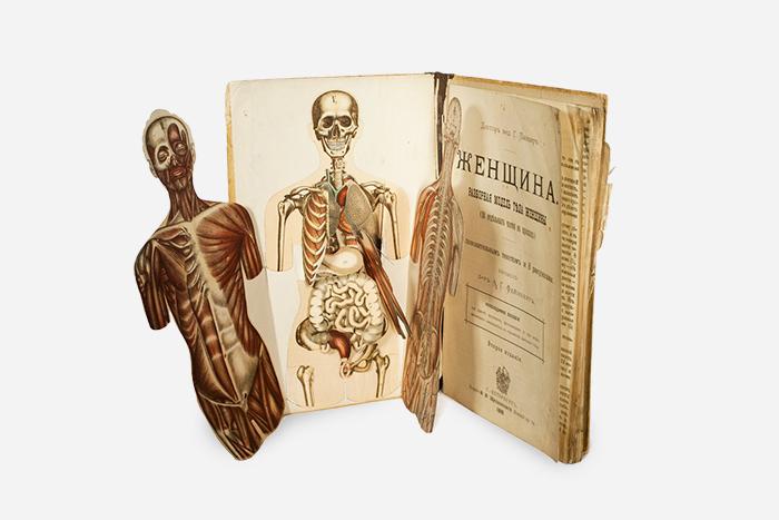 Анатомическая книжка-раскладушка, Россия, 1899&...