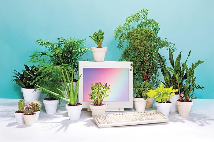 Денежный поток: *5 удобных онлайн-сервисов для ведения бухгалтерии*