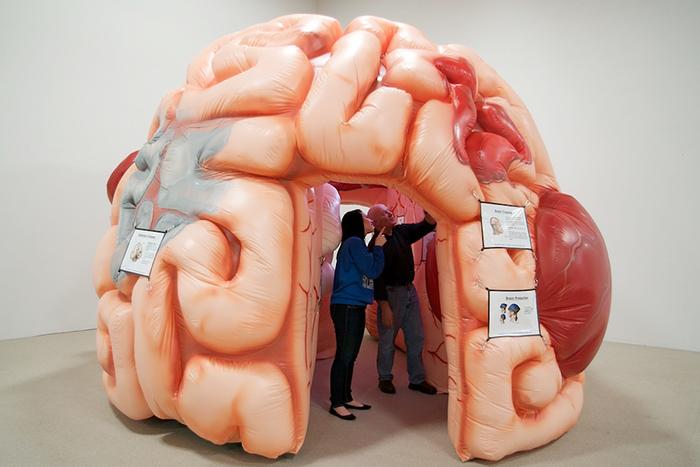 Новые гении: *когда и как генетики сконструируют сверхинтеллект*