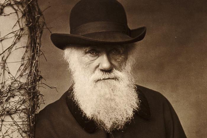 Компания «Дисней» выпустит *байопик о Чарльзе Дарвине*