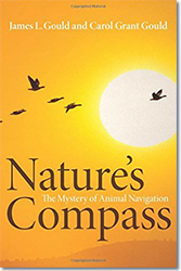 Nature's Compass: The Mystery of Animal Navigat...