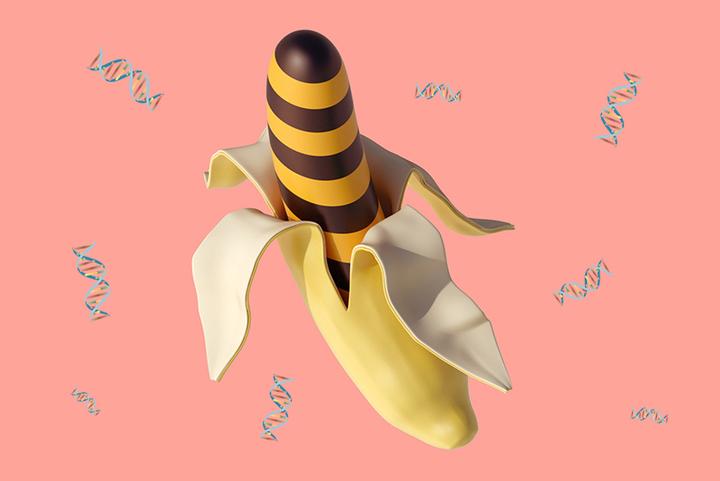 Просто о сложном: *ничего, что наша ДНК наполовину совпадает с ДНК банана?*