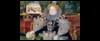 Портрет королевы Елизаветы нафоне «Непобе...