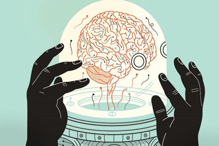Эмоциональная наука: Анна Свердлик о природе математики с точки зрения нейроученых