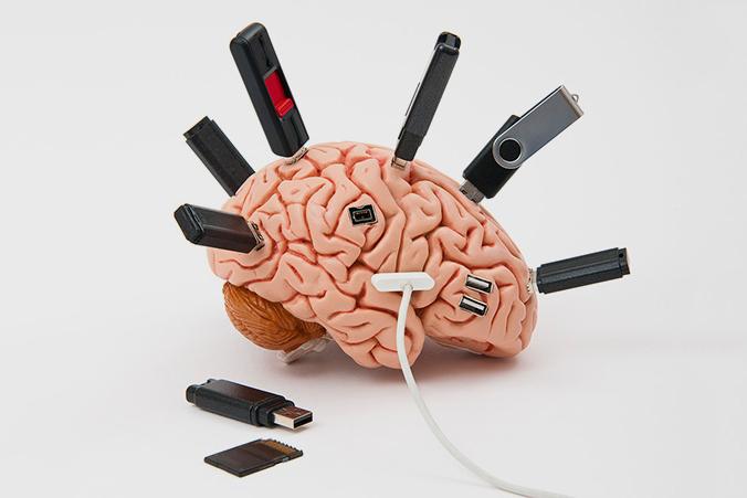 А внутри пустота: почему наш мозг совсем не похож на компьютер