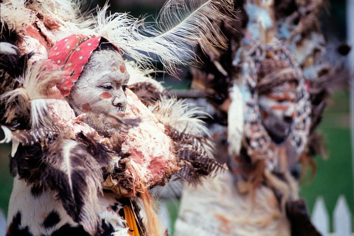 Совет племени: классы «Газель», «Зебра», «Лев» и другие особенности африканского общества