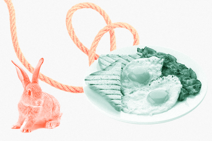 Полоса удачи и кроличья лапка: 10 заблуждений в статистике