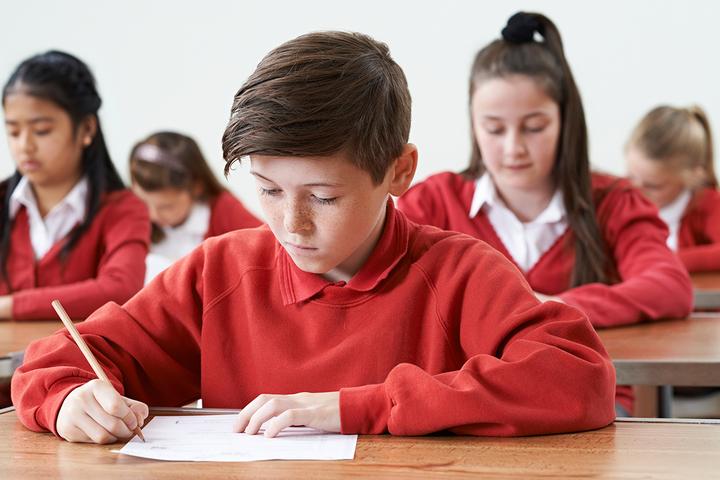 Быстрое чтение: как обучение в элитной школе влияет на будущее