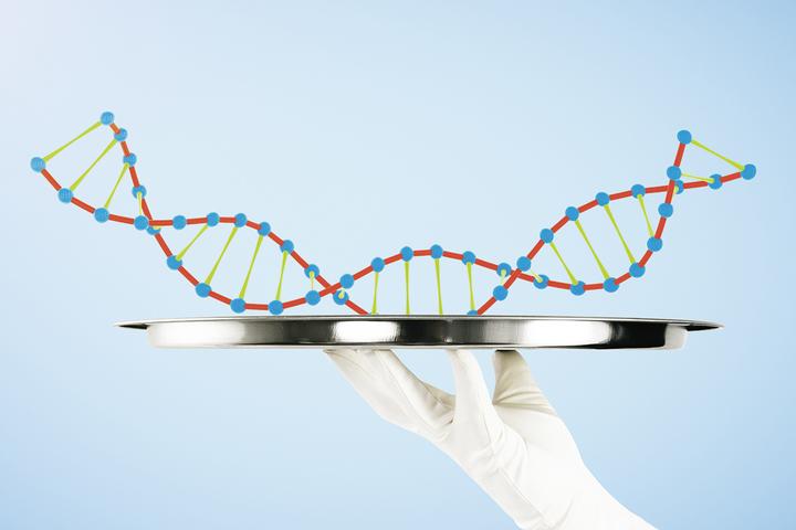 Старый жесткий диск и гены мамонта: долго ли хранится ДНК и откуда в ней мусор
