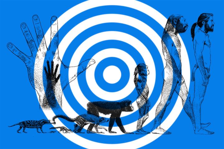 Новые виды людей: 5 сценариев биологического будущего человека