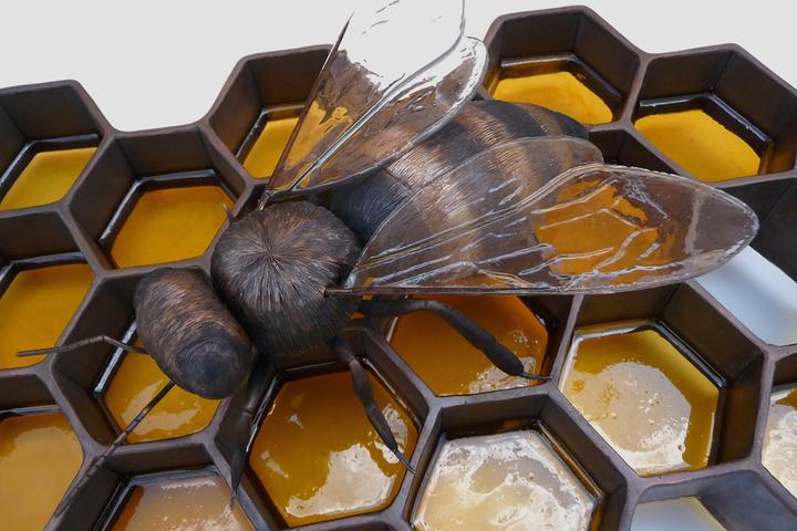 Пчелиная экономия: почему природа предпочитает шестиугольники?