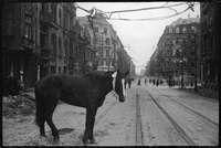 Берлин, 1945год