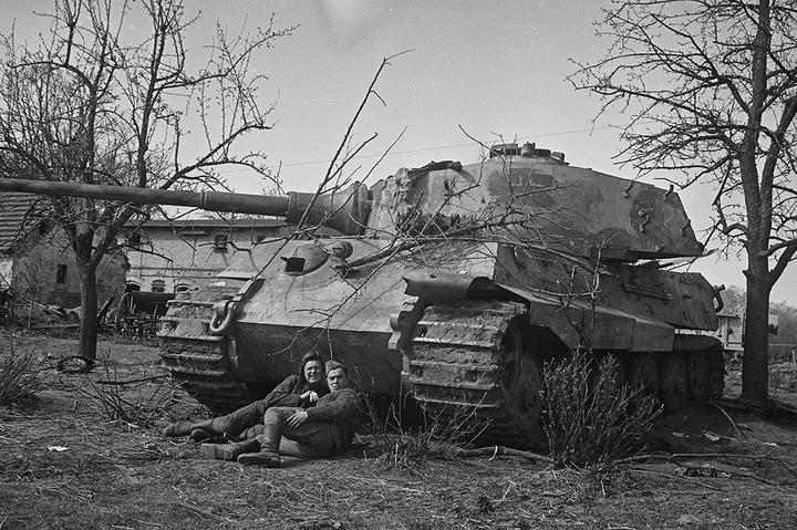 Фото по объявлению: архив Второй мировой войны, купленный на «Авито»