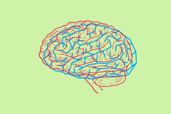 Биологический прайм-тайм: как обхитрить мозг или хотя бы научиться прокрастинировать с пользой
