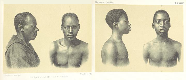 © HARTMANN, Robert / The British Library