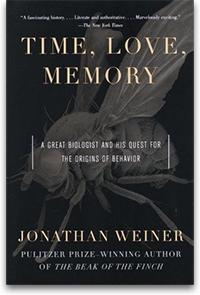 «Time, Love, Memory»