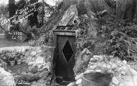 Дом, устроенный встволе живой секвойи кра...