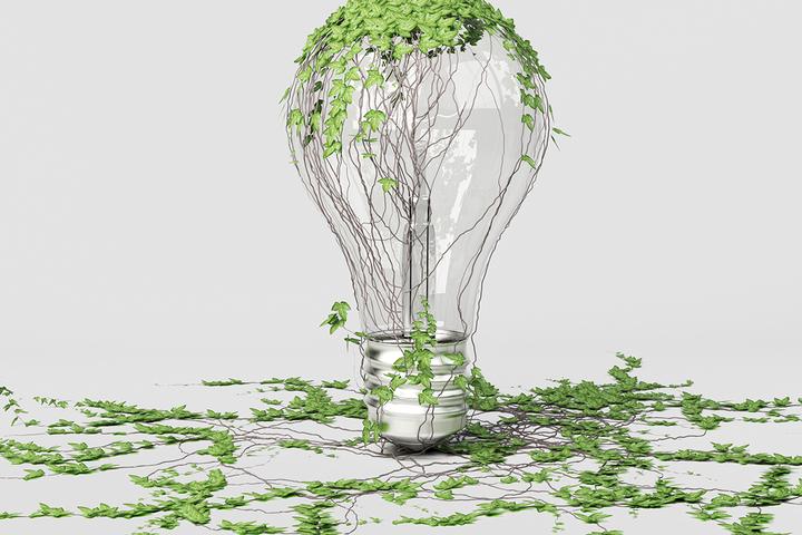 Цикл жизни: как подружить экономику и экологию