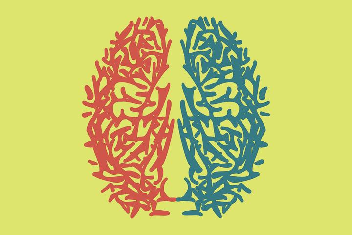 Быстрое чтение: как билингвизм влияет на мозг?