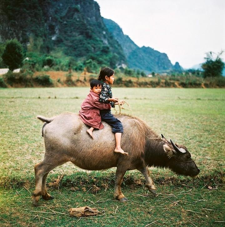 Северный Вьетнам, 1979год. Фото: Томас Би...