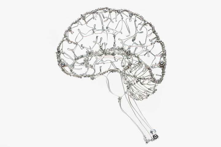 Вопрос на T&P: что убивает нервные клетки и можно ли все-таки их восстановить?