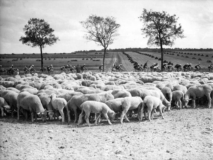 1938год. Место неизвестно. Фото: Nationaa...