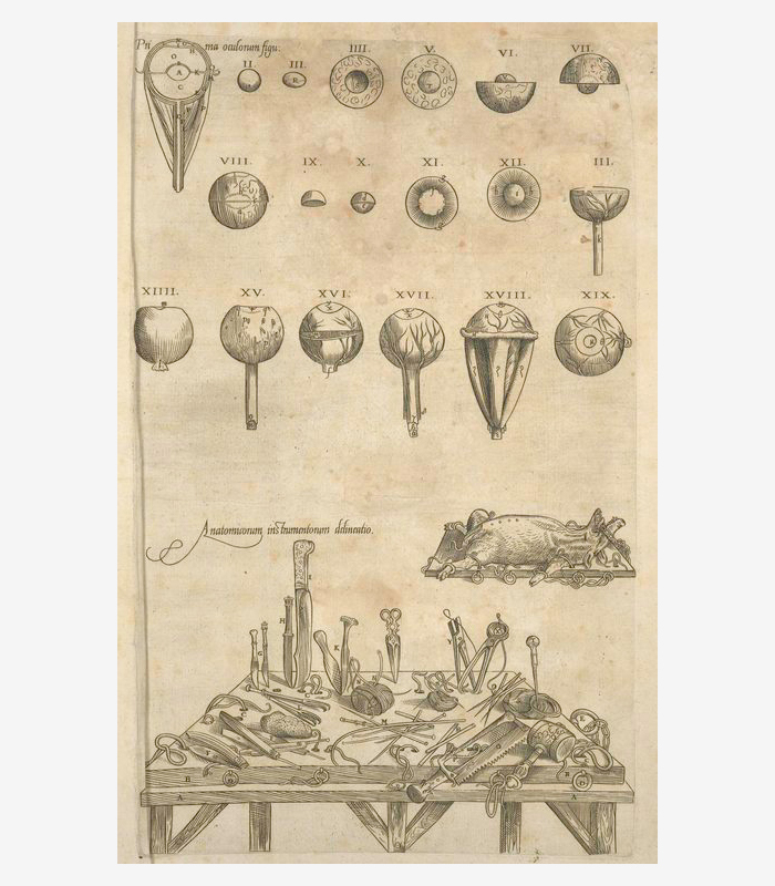 Медицинские инструменты. 1545год