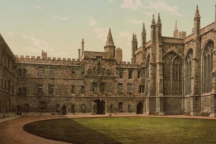 «Спасибо, что научили меня думать»: Ричард Докинз о своей учебе в Оксфорде и идеальных лекторах