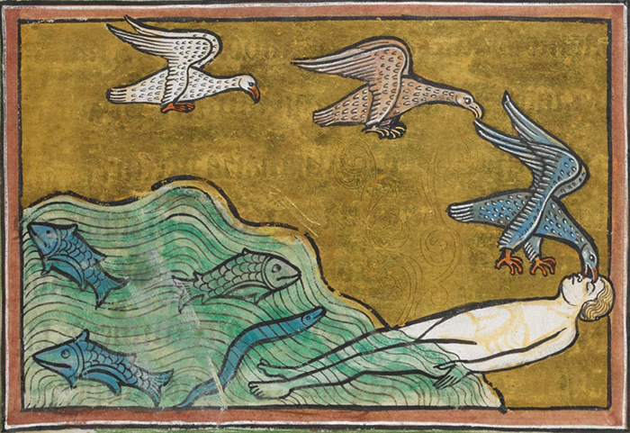 Харадр. Рочестерский бестиарий. XIII век