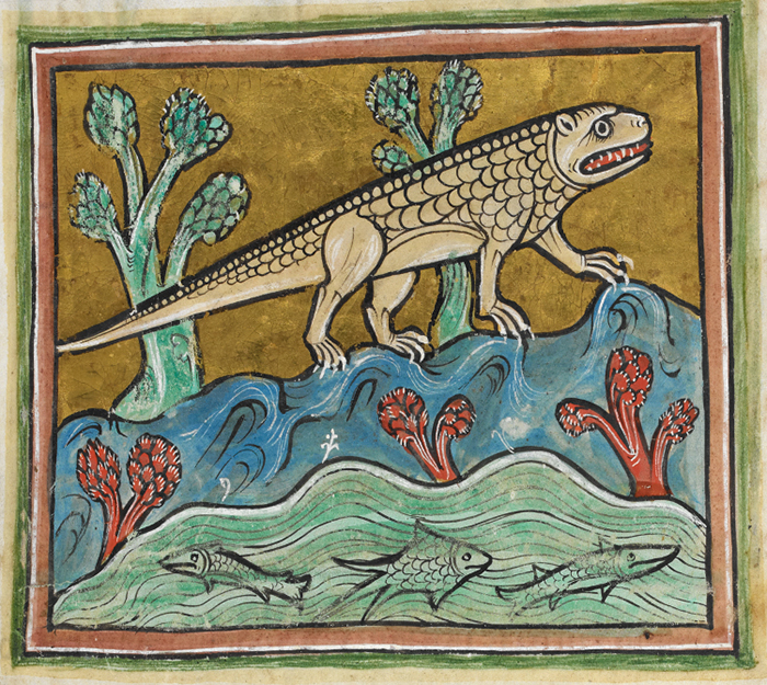 Крокодил. Рочестерский бестиарий. XIII век