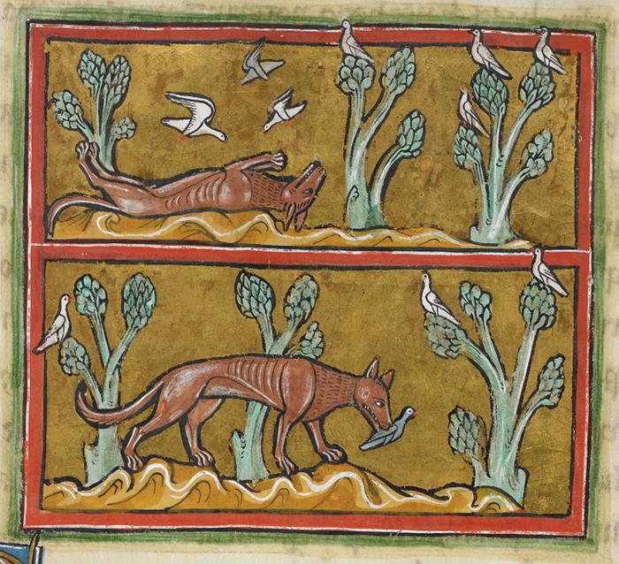 Лисица. Рочестерский бестиарий. XIII век