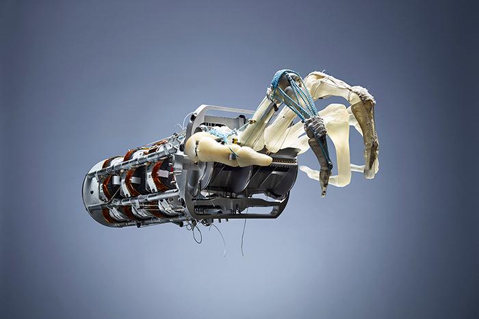 Восстание машин: стоит ли бояться искусственног...