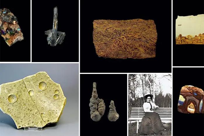 Государственный геологический музей имени...
