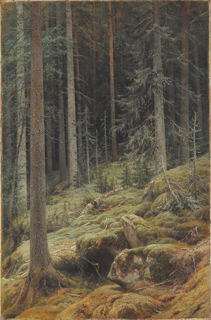 Дебри. Иван Шишкин. 1881год