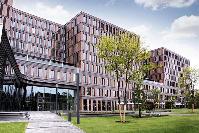 Грант не найдет себя сам: как я отправился учиться во Франкфуртскую школу финансов и менеджмента