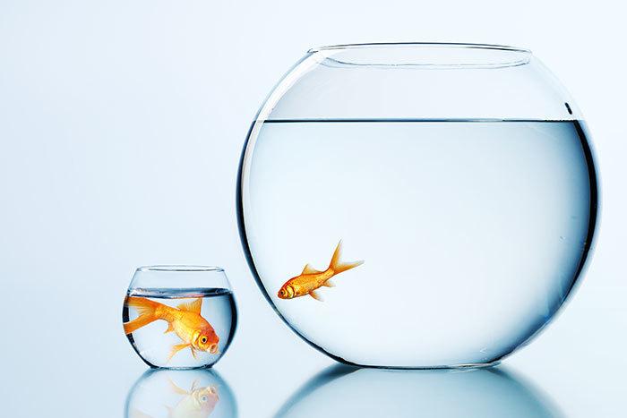 Снизьте ожидания и мыслите критически: как перестать сравнивать себя с другими