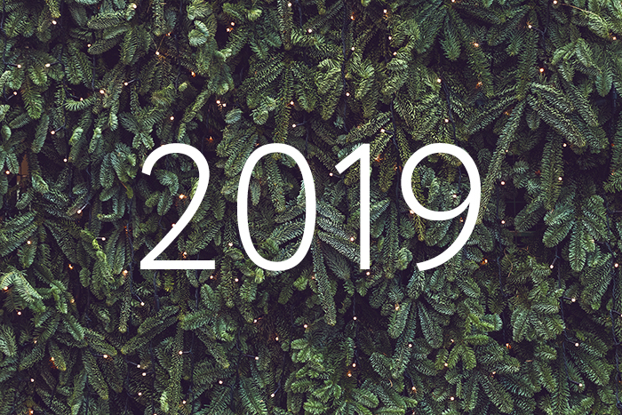Годичная программа: о чем мы писали в 2019-м
