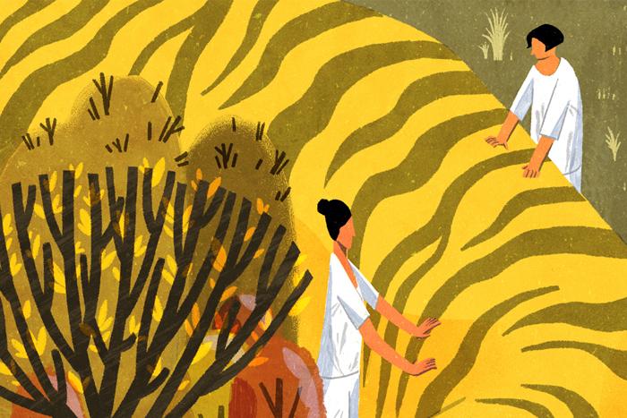 Отпуск с пользой: где можно стать зооволонтером в России